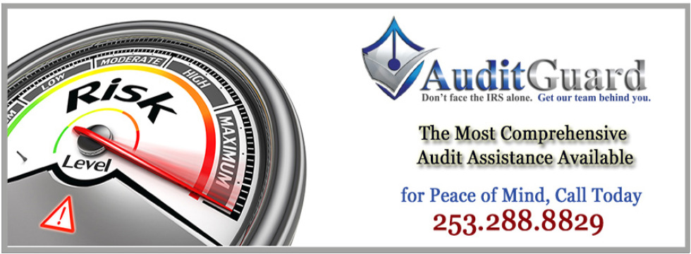 Audit Guard Protection